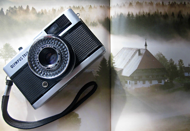 Tori's Tales, Camera, Film Photography, Olympus Trip 35, The Black Forest, Germany, Eyewitness Travel