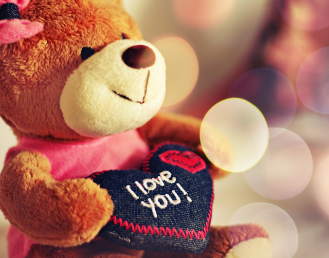 Love Bird Teddy Bear