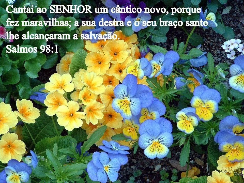 http://3.bp.blogspot.com/-IlKU_YEX6AM/UoNJ44MT1nI/AAAAAAAAVMk/UNlQP2wxAiE/s1600/1313.jpg