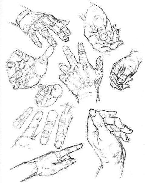 рисунок руки, схема для рисования руки, как рисовать руку в пропорции