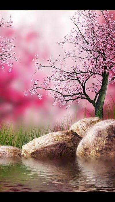 most beautiful nature wallpaper 2015 for android user
