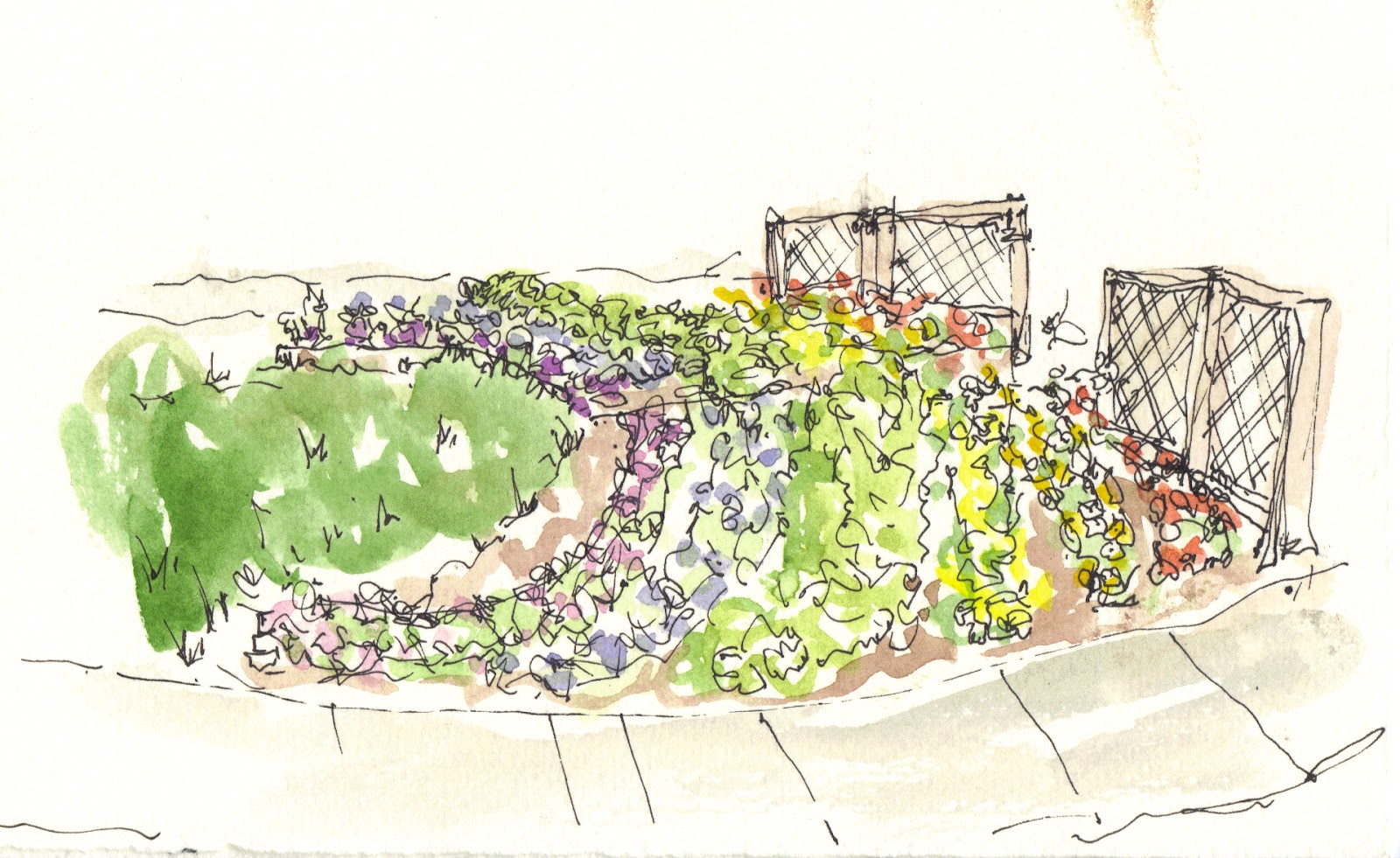 Flower garden sketch - I Forgot To Post One Sketch From The Children S Garden This Week This Is A Small Semi Circle Flower Garden With Pansies And Parsley In It