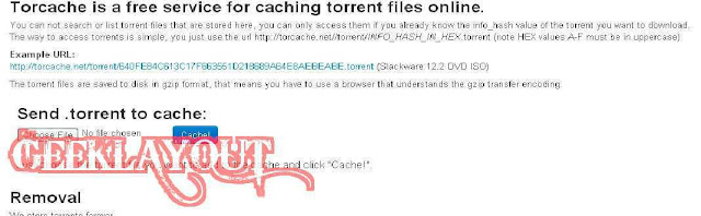 download torrent from IDM