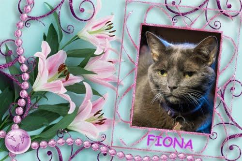 RIP Fiona