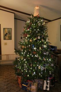 photo of our 2012 Chrsitmas tree