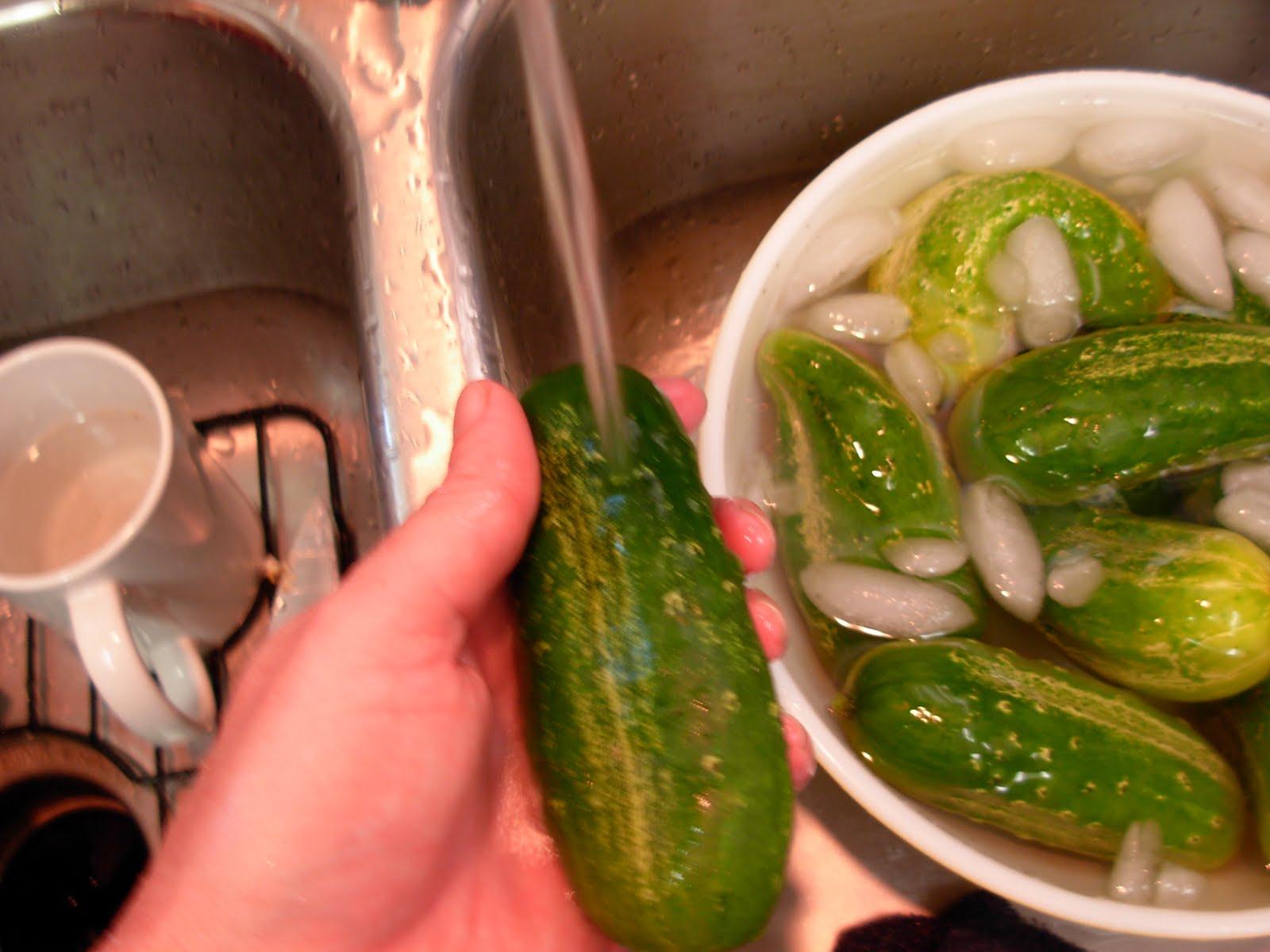 Old Fashioned Grape Leaf Pickles