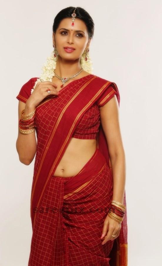 Takkar-heroine-Meenakshi-dixit-saree-photos