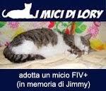 adotta un gatto FIV+