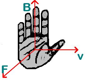 [Tướng tay] - Bàn tay rộng và bàn tay hẹp