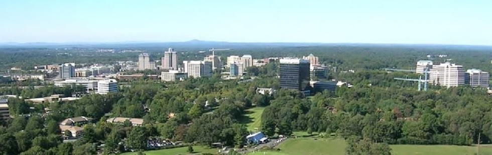 Reston from above.