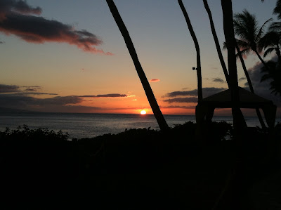 Dreaming With Gold Eyes 5 Best Activities In Maui Hawaii