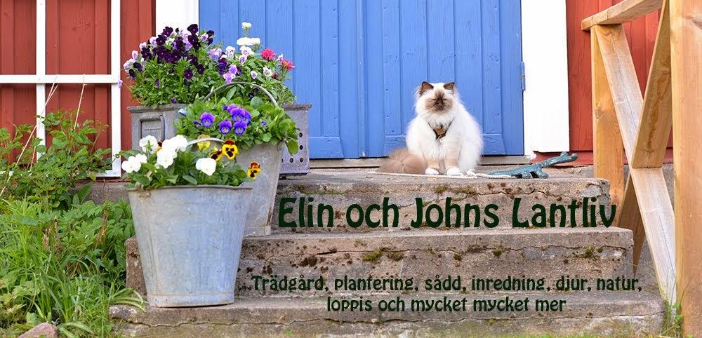 Elin Och Johns Lantliv
