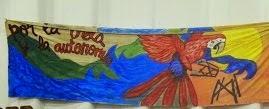 No al extractivismo hidroenergetico y minero