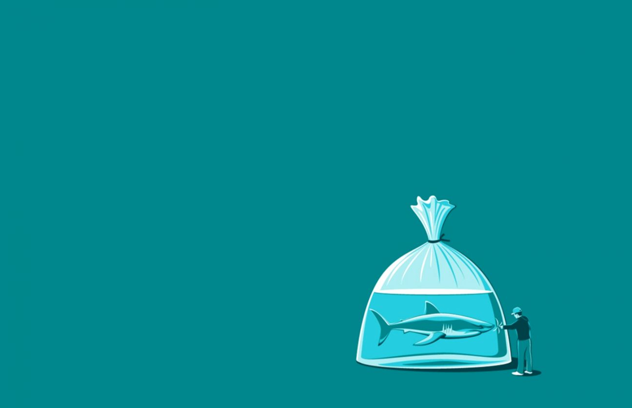 Good   Wallpaper Home Screen Minimalist - shark-water-bag-stupid-man-minimal-desktop-wallpaper  Graphic_183052.jpg
