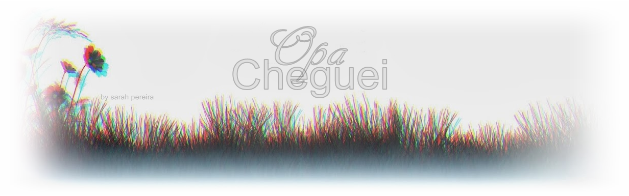 Opa, Cheguei!