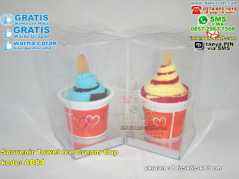 Souvenir Towel Ice Cream Cup