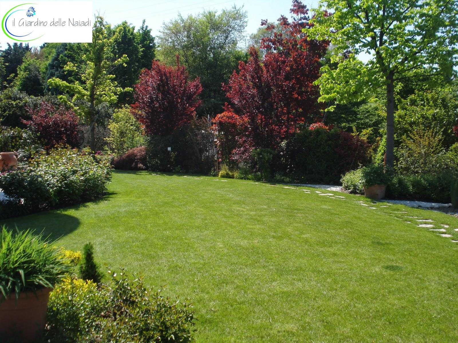 Il giardino delle naiadi progettare un prato ornamentale for Progettare il giardino di casa