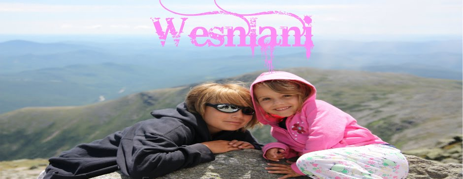 WeSnLaNi