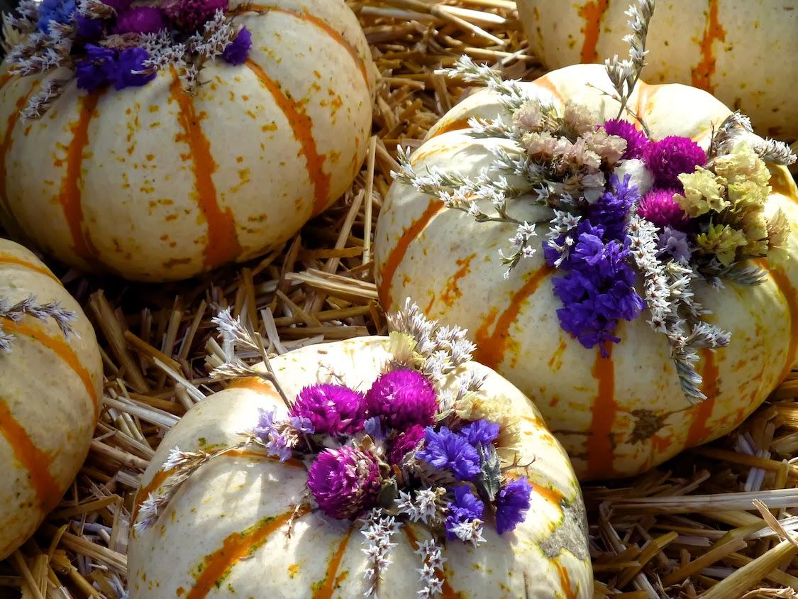 Halloween el reino de la calabaza el guisante verde - Calabazas decoradas ...