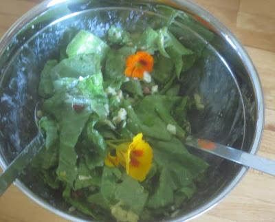 Wosun trifft Caesar Salat