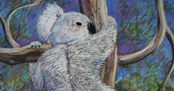 Koala tail - photo#19