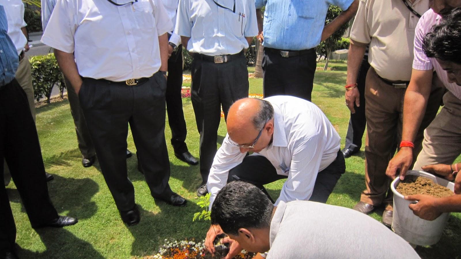Mr Mangu SIngh Delhi Metro planting a sandalwood trees