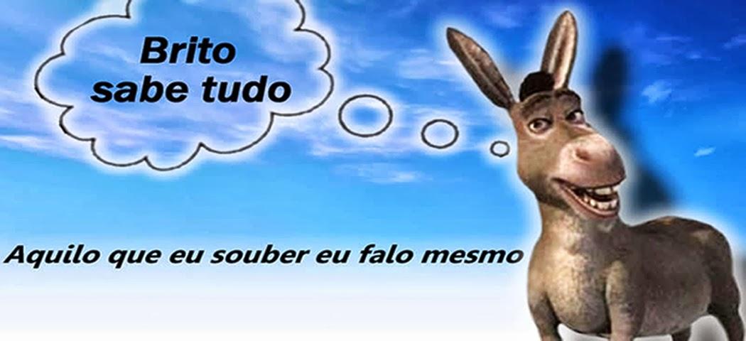 BRITO SABE TUDO