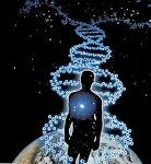 Cosmic-Origins.