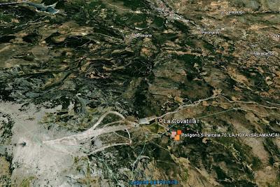 Vista Google  Satelite de la parcela a subastar