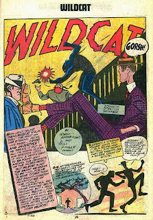 Wildcat and Stretch Skinner