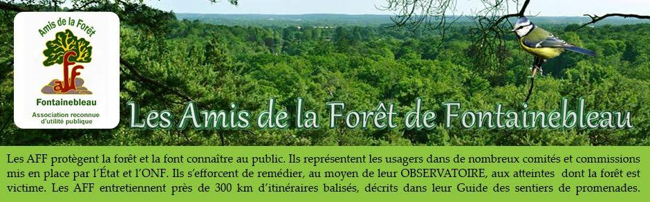 OBSERVATOIRE DE L'AFF