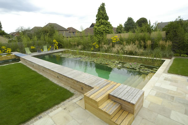 Natural swimming pools for Sustainable swimming pools