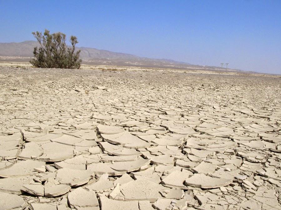 Akan Ada Bencana Kekeringan Dan Kelaparan Sebelum Dajjal Muncul Di Akhir Zaman