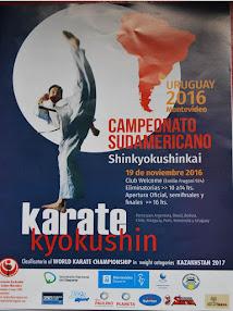 Torneo Sudamericano de Karate