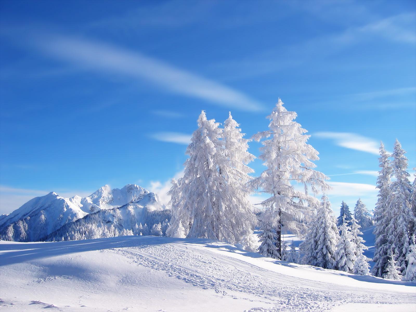 http://3.bp.blogspot.com/-IrSYp-KDtl4/TZnADWfok-I/AAAAAAAADFM/Ar6rF2id39Y/s1600/Winter%20wallpaper%20by%20cool%20wallpapers%20%285%29.jpg