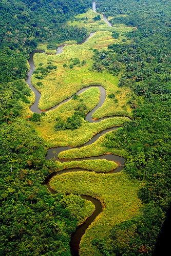 THE CONGO RIVER, AFRICA