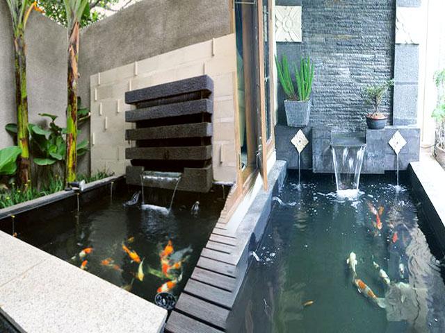 jasa pembuatan kolam koi dan air terjun minimalis cantik