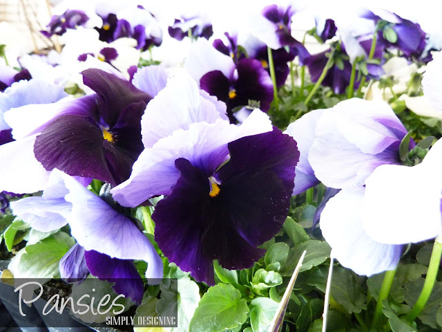 Pansies, DIY Flower Tower, Home Depot #sponsored #digin #heartoutdoors #spring