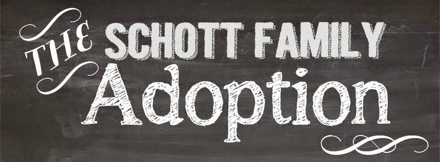 The Schott Family Adoption Blog