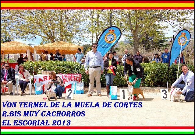 BIS Babys - El Escorial 2013