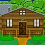 SelfDefiant Lost Cabin