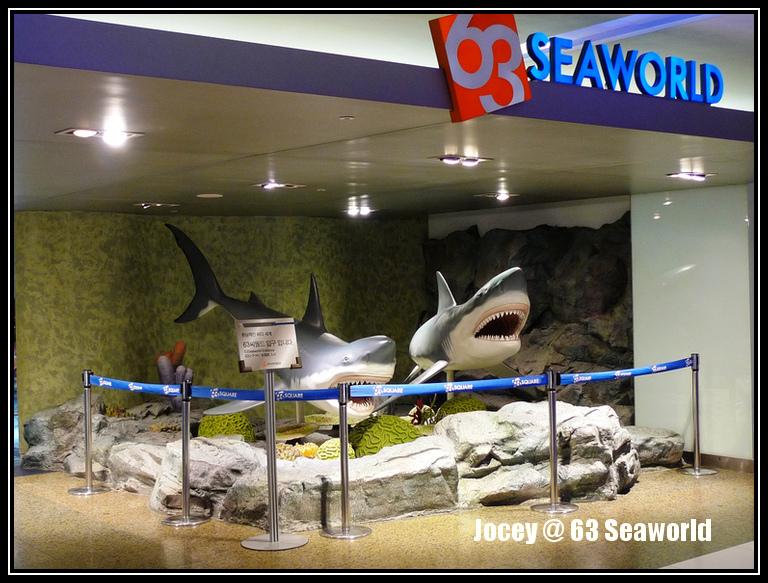 63 Sea World Aquarium Korea Fun