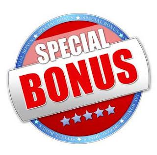 Vir bonus meaning