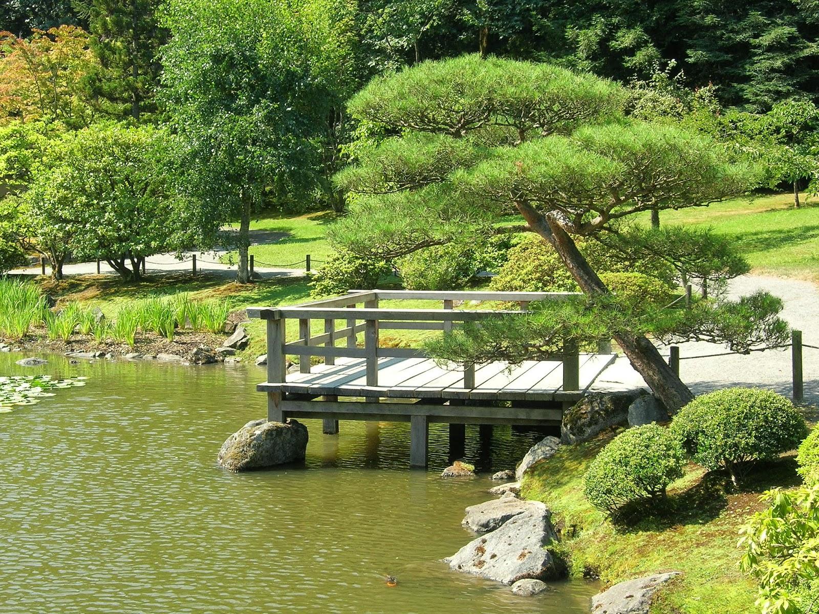 My little bungalow the seattle japanese garden and for Little japanese garden