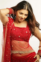 Beautiful, Bhoomika's, Photoshoot, In, Red