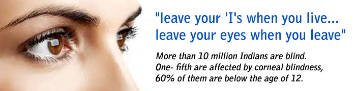 About Eye Donation Essays Custom Speech Ghostwriter Websites For Phd