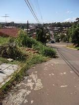 VEREADOR DO PSB PEDE LIMPEZA DA CASTELO BRANCO