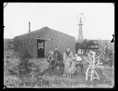Windmill House Dog Grooming Haddiscoe