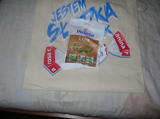 Verbena -  Lipa