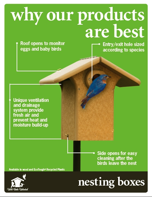 bird house design hole size